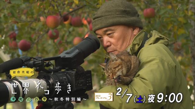 パンチラ part45 [無断転載禁止]©bbspink.comYouTube動画>1本 ->画像>4272枚